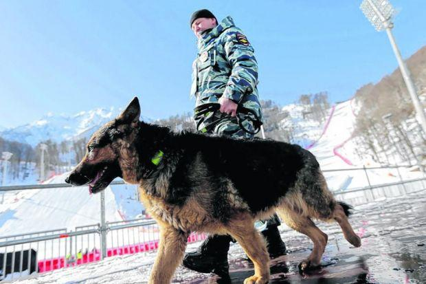 A Russian security forces K9 officer patrols with his dog near the finish area of the Alpine ski course ahead of the 2014 Winter Olympics in Krasnaya Polyana, Russia. Picture: Gero Breloer/AP