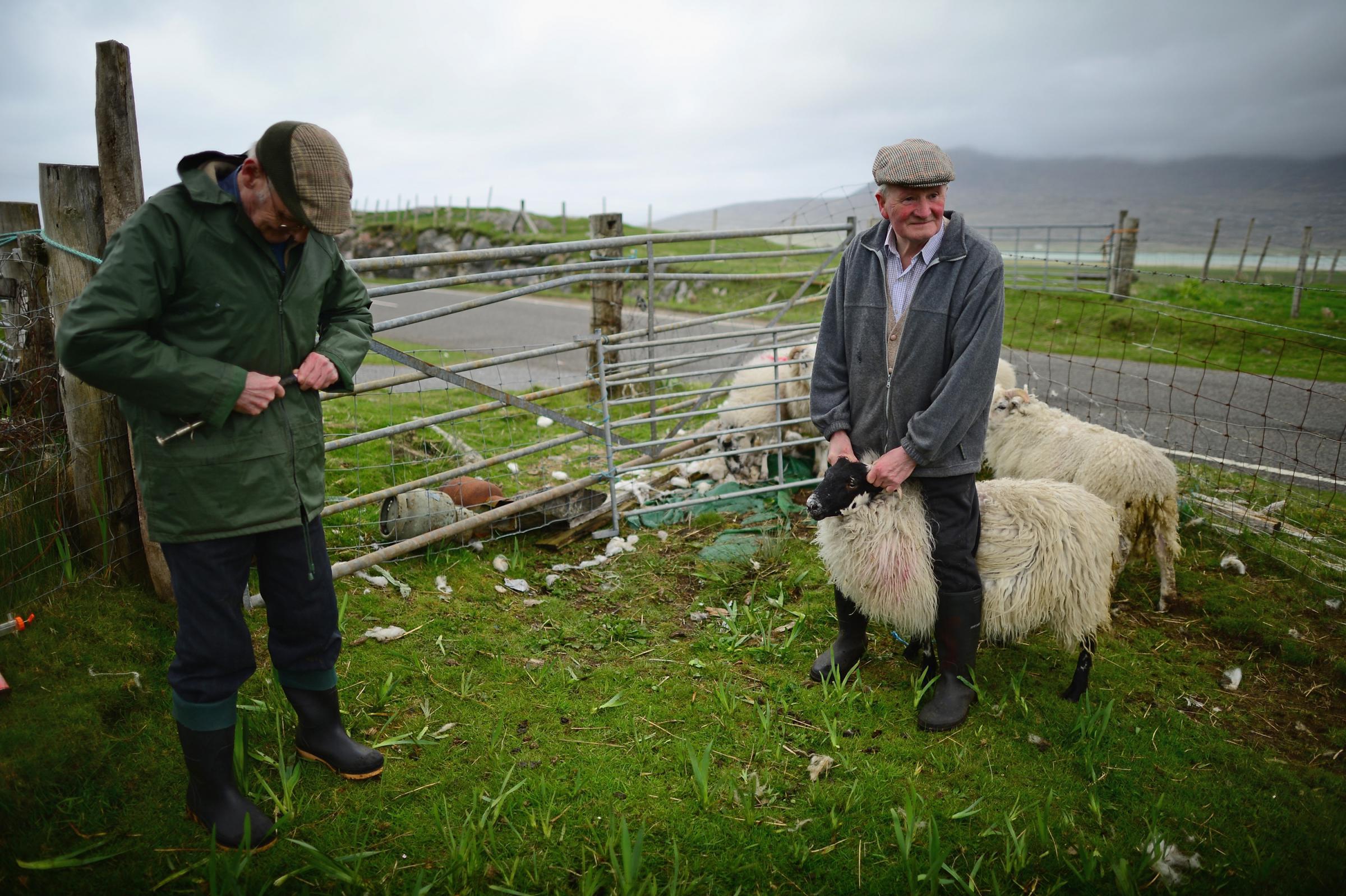 Farmers dating site scotland