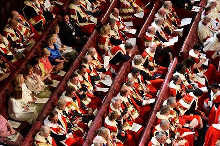HeraldScotland: The House of the Lords during the State Opening of Parliament.