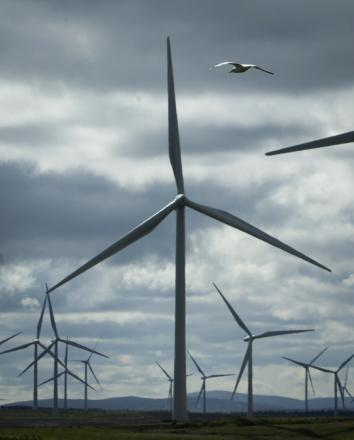 Half of Scotland's energy consumption came from renewables last year