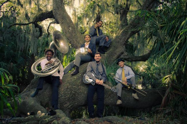 Music Review: New Orleans Swamp Donkeys