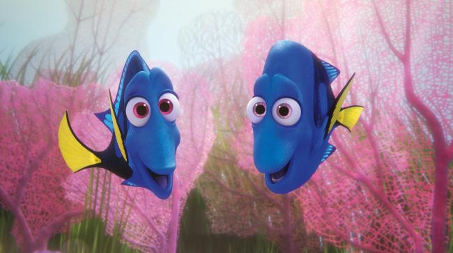 Undated Film Still Handout from Finding Dory. See PA Feature FILM Reviews. Picture credit should read: PA Photo/Disney/Pixar. WARNING: This picture must only be used to accompany PA Feature FILM Reviews...