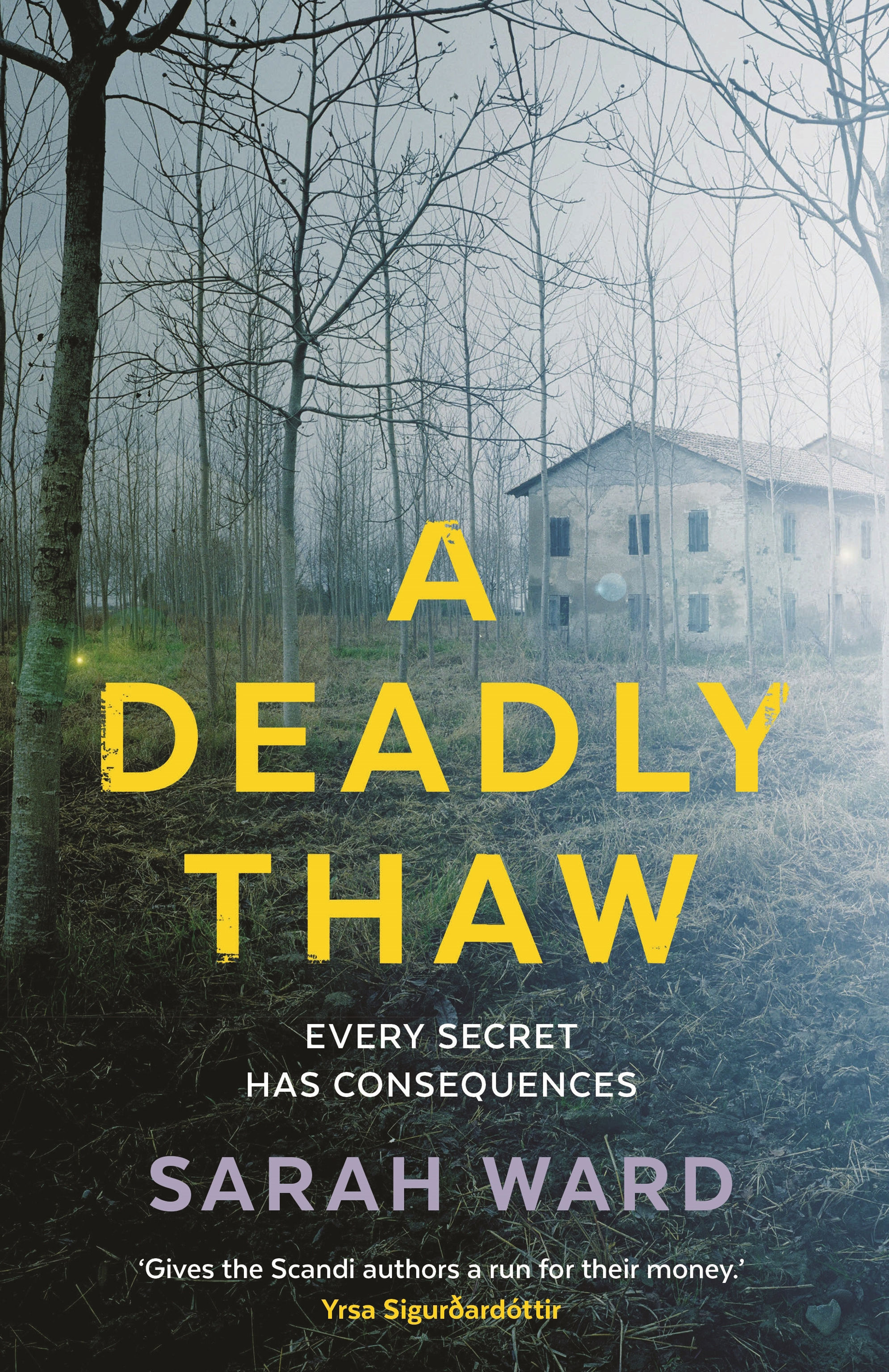 A Deadly Thaw by Sarah Ward.
