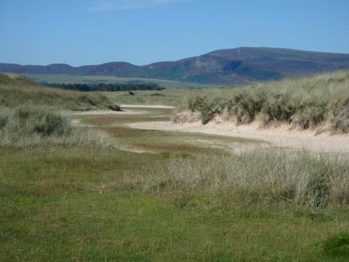 Conservationists criticise Donald Trump-style seaside golf course plan