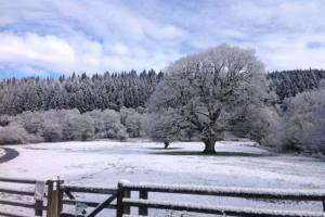 Storm Ewan: Snow, ice and wind warnings withdrawn