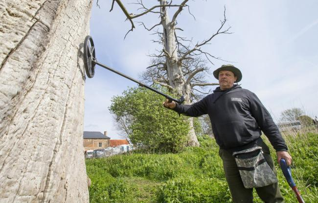 Metal detector enthusiast Gary Craig from Scotland searches for bullets trapped inside a tree as part of a landmark archaeological research campaign called