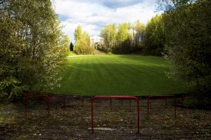 FIELD OF DREAMS: Cathkin Park has been laid to ruin but plans are now ongoing to restore the Glasgow ground to its former glory, above
