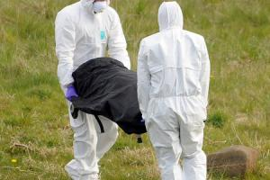 police forensics take the body away from the scene in rashielee erskine...PICTURES  - michael boyd......