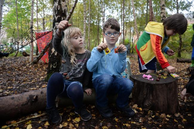 What S A Conker Experts Call For Children To Reconnect With