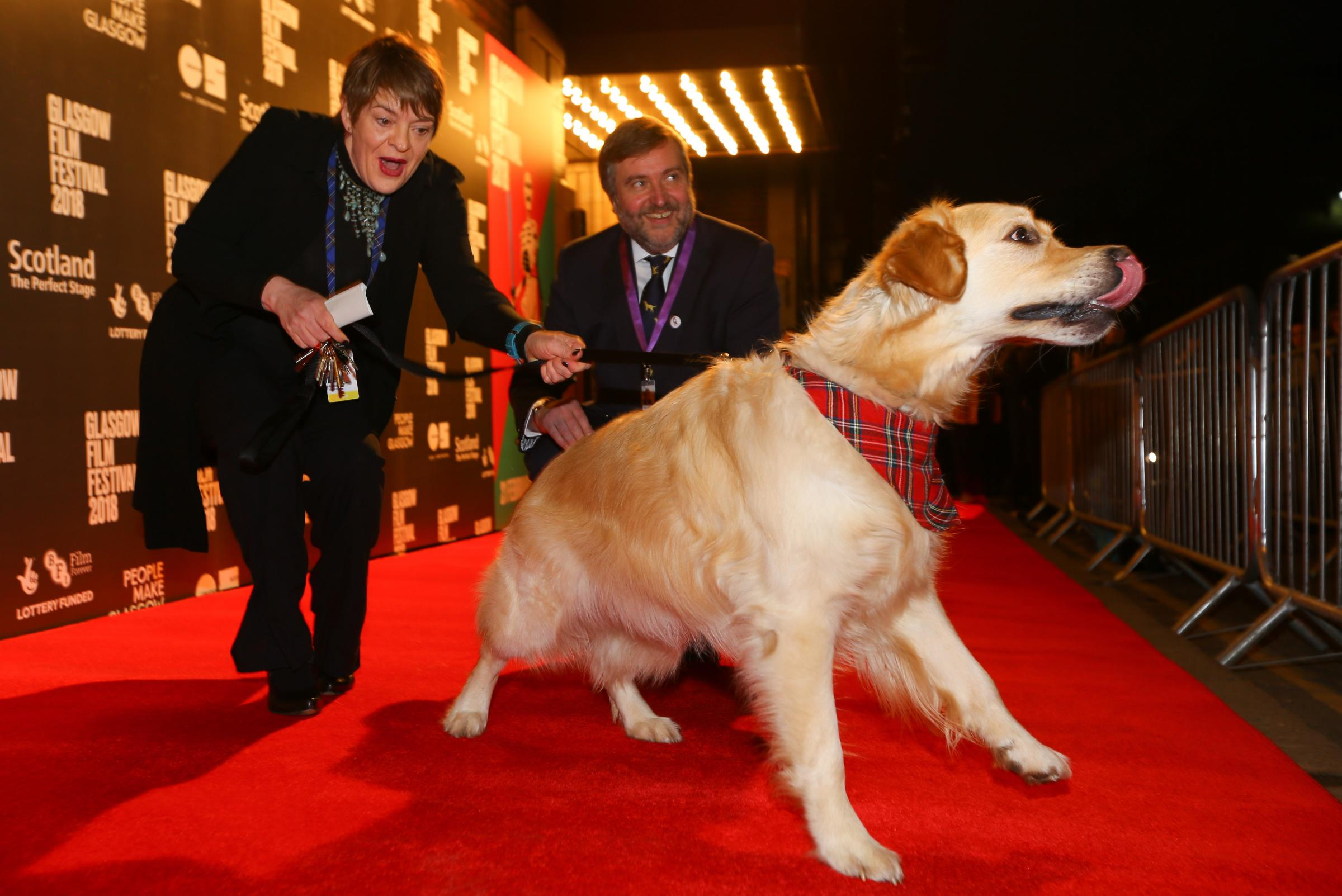 Allison Gardner and Allan Hunter, Glasgow Film Festival co-directors, are joined on the red carpet by VisitScotland 'ambassadog' George. Picture: Colin Mearns