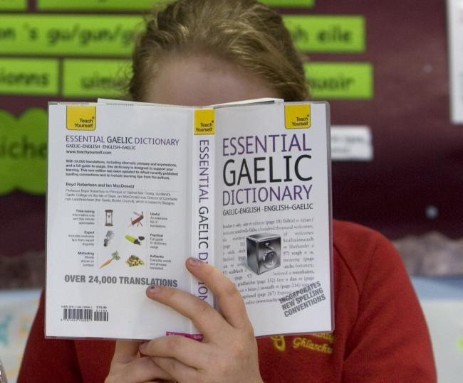 Agenda: Our politicians should be doing more for Gaelic