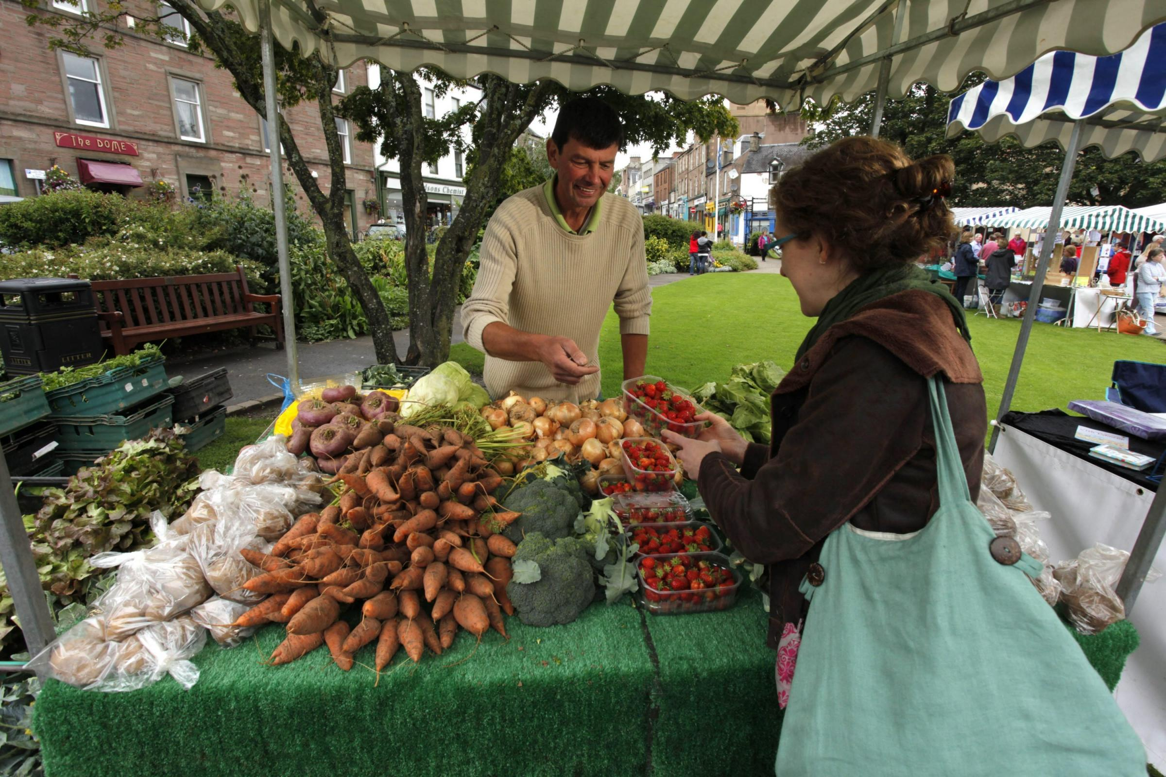 Blairgowrie farmers' market in the Wellmeadow, Blairgowrie, Perthshire. Picture Credit: Paul Tomkins info@scottishviewpoint.com