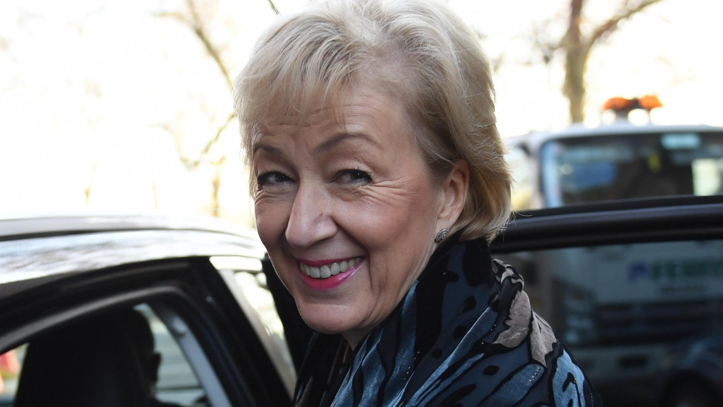 No-deal Brexit 'default position' if no alternative deal works, says Leadsom