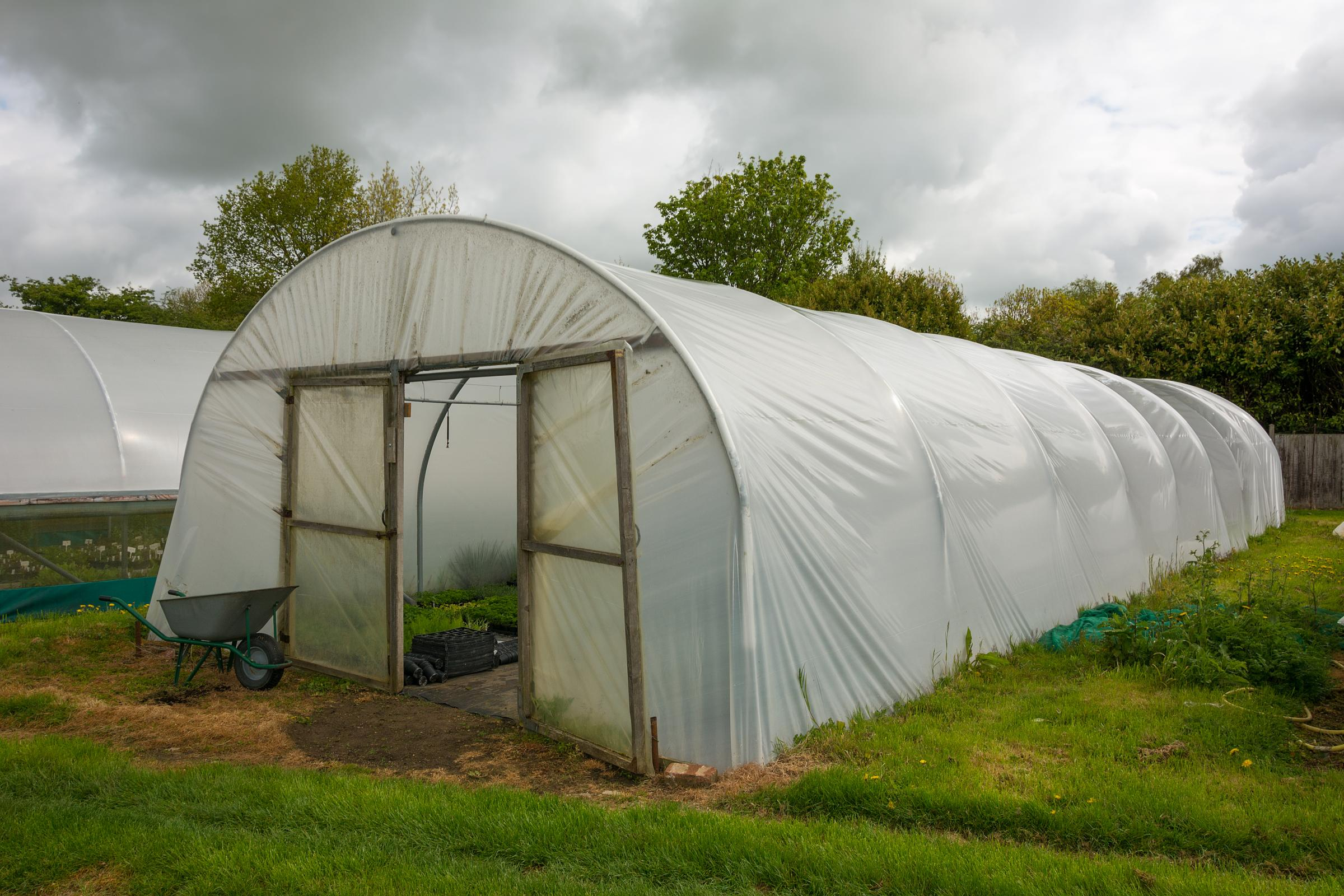 Horticultural polytunnel for growing tender plants