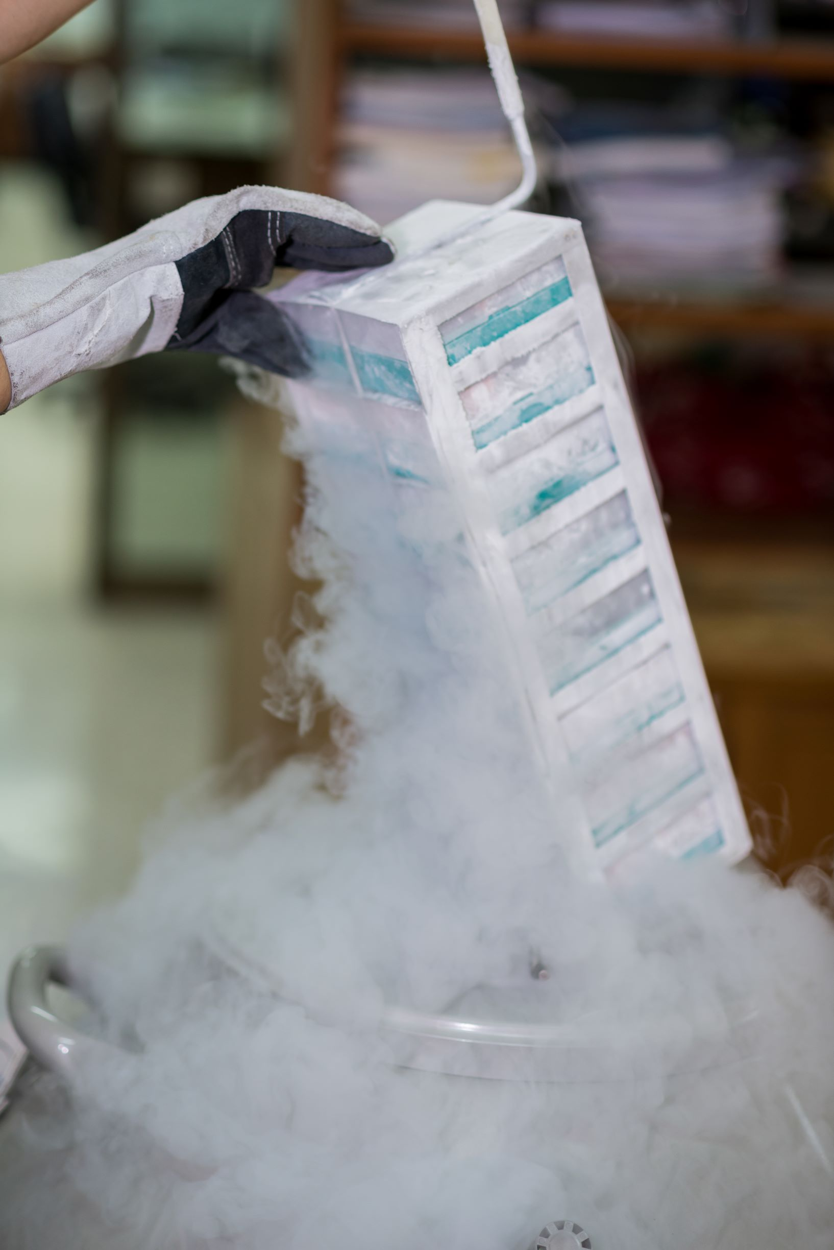 """Scots firm creates first bio-banks for """"off-the-shelf"""