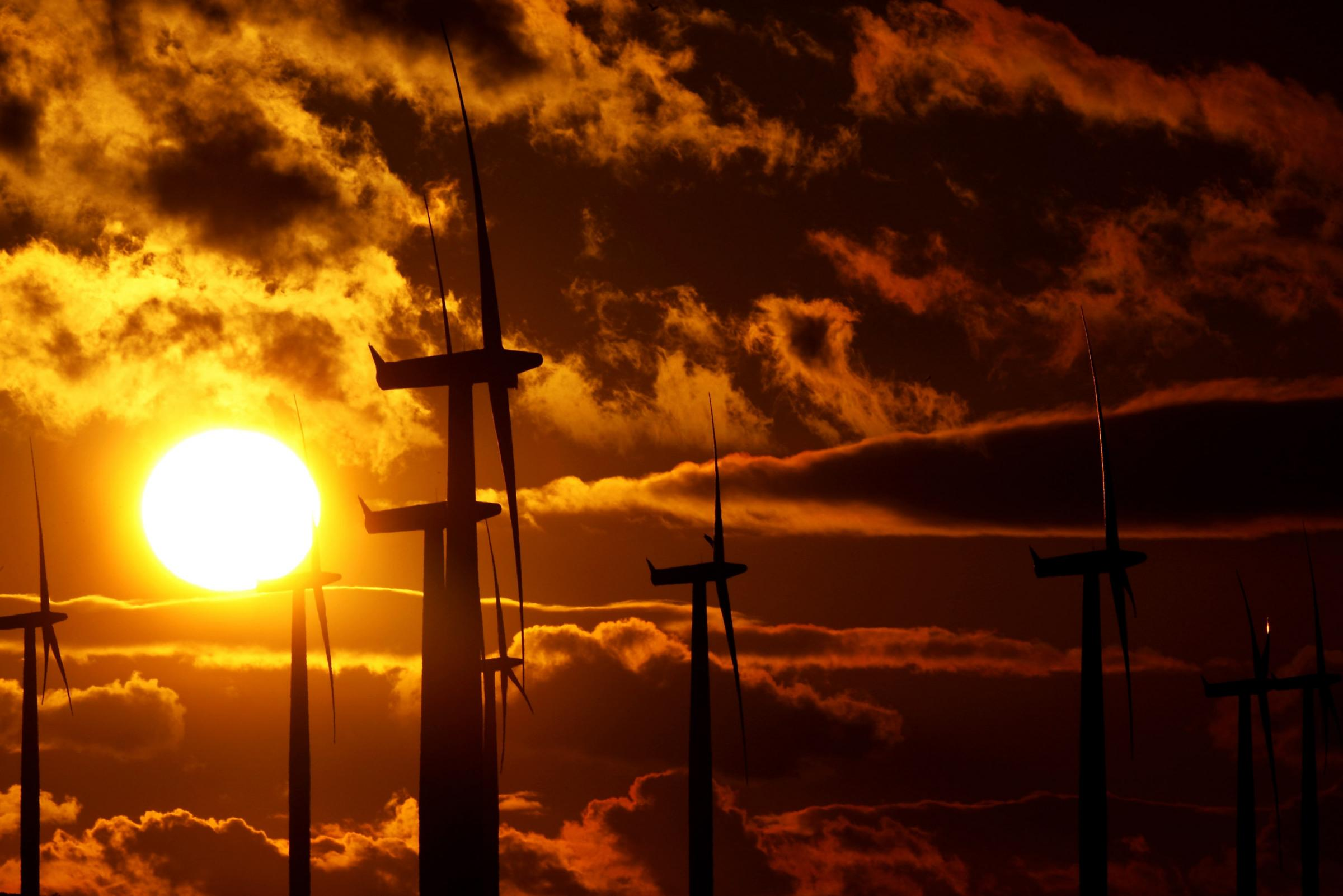 Power from wind farms does nothing to keep our electricity bills down