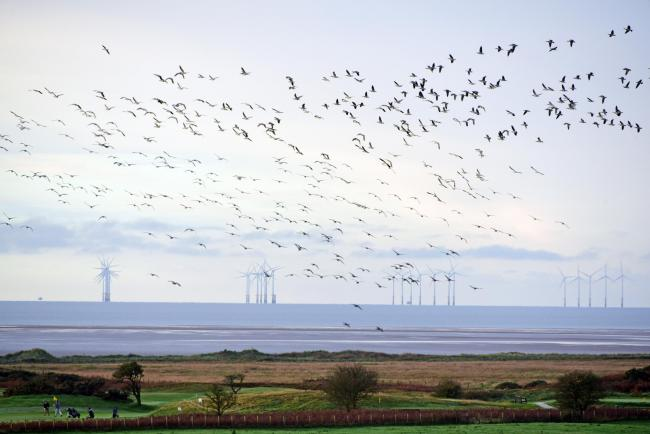 Scotland set for multi-billion pound economic boost under new deal for offshore windfarms