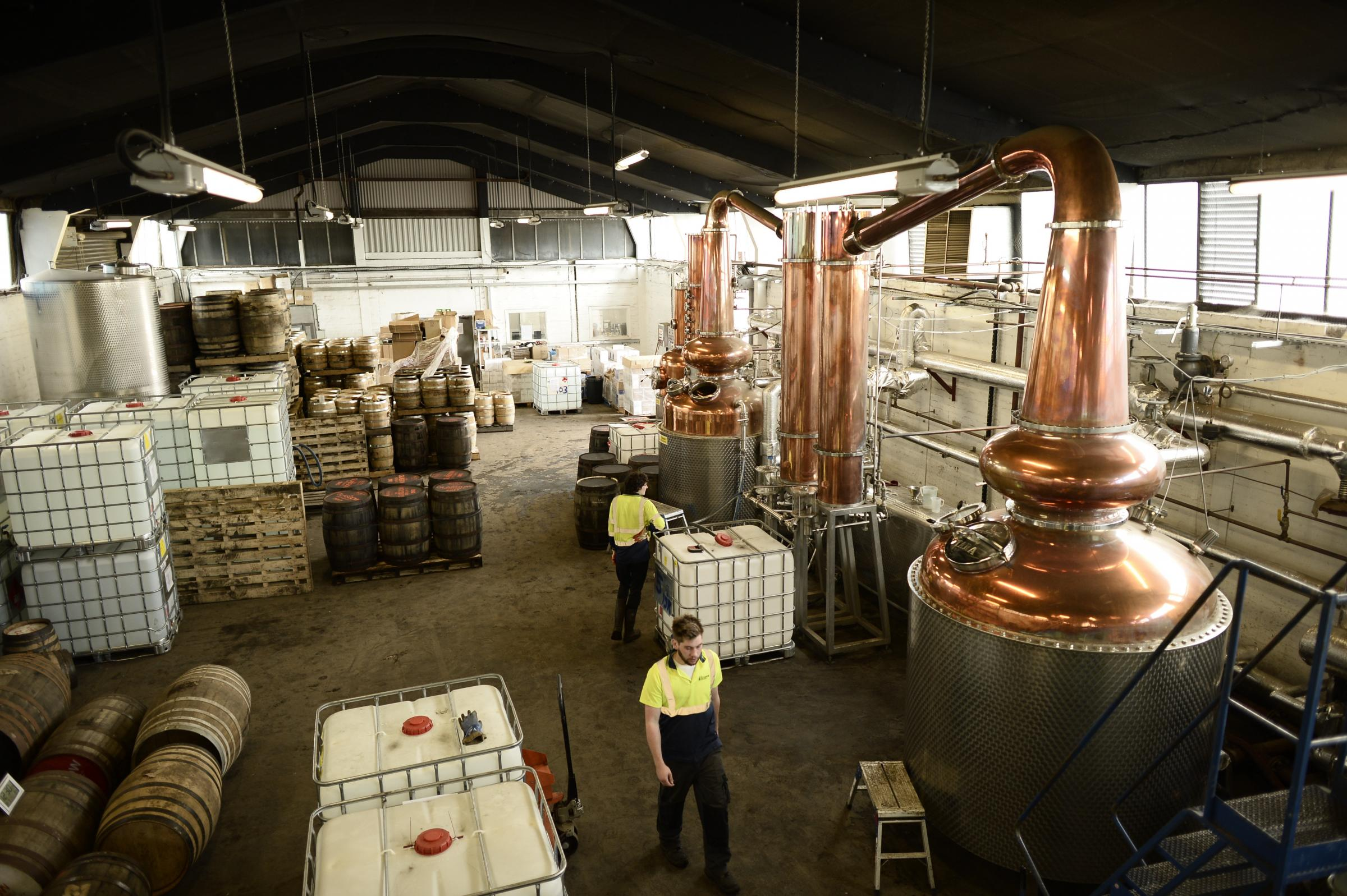 Scottish gin industry enjoys production boom