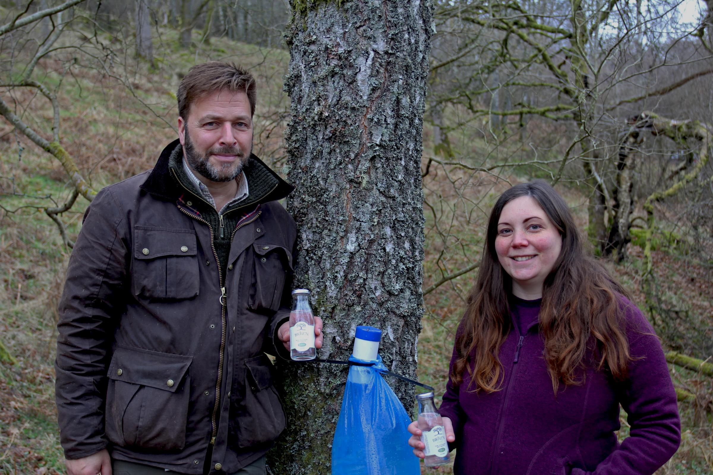 Perthshire Birchwater pioneers tap treasure of Scots woods