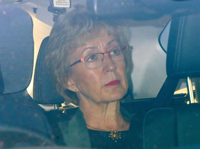 Over and out: another major blow for May as Leadsom resigns over Brexit - the 33rd minister to do so