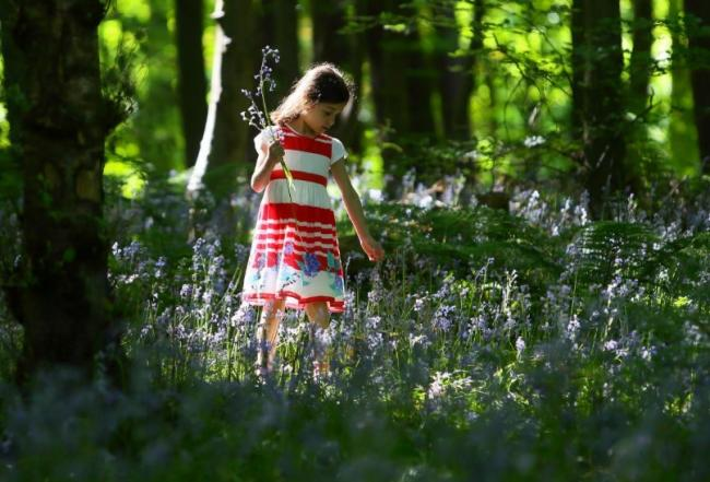 Scots should cherish their green spaces, says charity