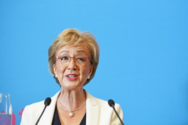 Hard, red line: Leadsom proposes 'managed exit' from EU on Oct 31