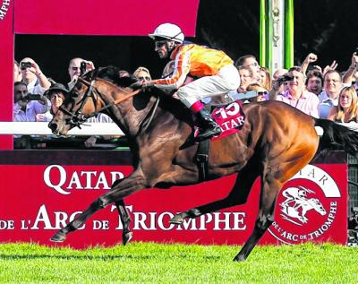 Danedream has been ruled out of Prix de l'Arc de Triomphe on orders of vets in Germany. Picture: EPA