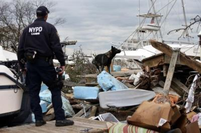 chaos: A K9 Unit officer of New York City Police and his search dog look for possible victims on the south side of Staten Island. Picture: Reuters