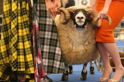 CATWALK TWIRL: A woolly pairing at the NSA Textiles Scotland Fashion Show. Picture: Stewart Attwood