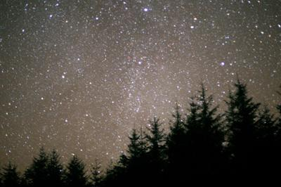 The skies above Galloway Forest Park on a clear night