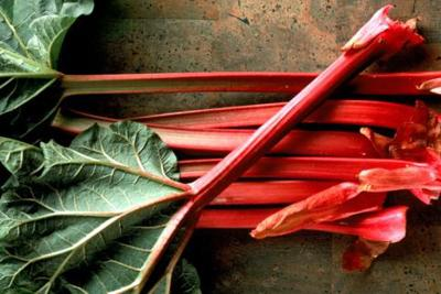 Whatever Branston pickle does, rhubarb does it better